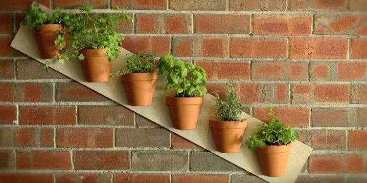 7 Terra Cotta Pot Projects To